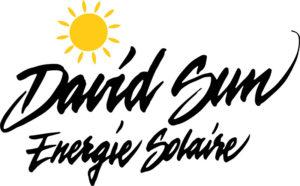 logo david sun 300x186